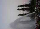 Litoměřice 2007, výstava hasičské techniky