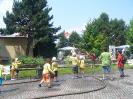 Litoměřice 2010, výstava hasičské techniky